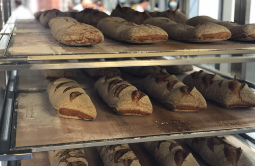 Pan-horneado-en-tests-de-hornos-para-panaderia-STATIC-GPG